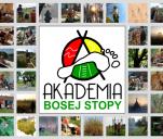 Akademia Bosej Stopy - budujemy ją razem